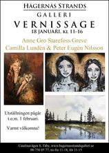 vernissage_ANNEGRO_CAMILLA_PETER_10JAN_2020